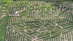 Moonlight Mazes at Long Acre Farms