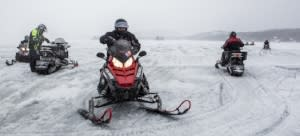 ROOST snowmobile survey