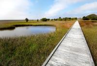 Fort Fisher State Recreation Area Boardwalk