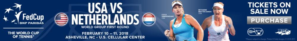 fed cup banner 2