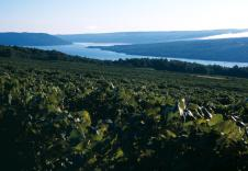 Keuka Lake – A drive along the Keuka Lake Wine Trail is filled with stunning scenery, and great shops, restaurants and country inns. Award-winning wineries along the lake offer tours, tasting and events. (Darren McGee/NYS DED)