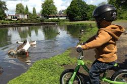 Cycling by the ducks by Melanie Bennett