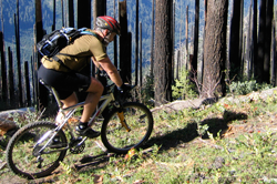 Mountain Biking by Norm Coyer