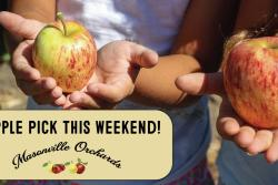 Masonville Orchards' U-Pick Fruit Orchard