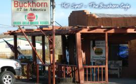 The Buckhorn Cafe