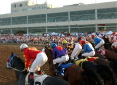 Prairie Meadows Horse Racing