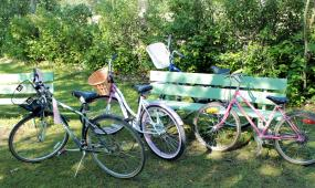Bikes outnumber the cars in Cottage Country.