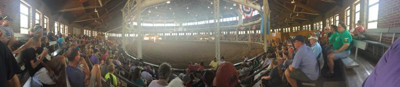 Muttin Bustin Iowa State Fair