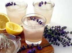 lavendar cocktail