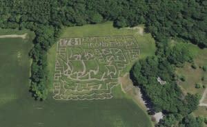 Fort Ticonderoga Corn Maze