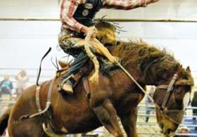 United Rodeo Association Finals