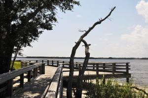 Dock view at Carolina Beach State Park