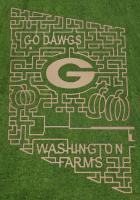 Washington Farms Corn Maze