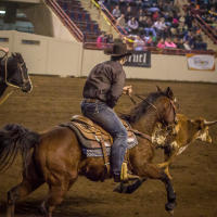pennsylvania-farm-show-rodeo