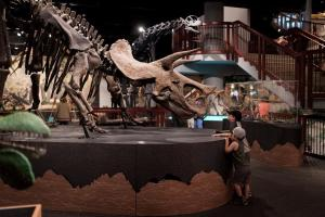 Kids with Dinosaur at Museum of Natural History Crowdriff
