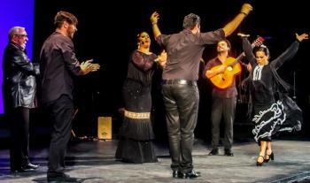 Casa Flamenca Flamenco