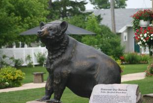 Community_of_Rossburn_-_Duke_the_Giant_Black_Bear.jpg