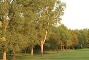 Crescent Drive Golf Course