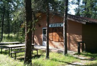 Sandilands Forest Education Centre