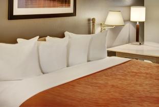 Thompson Inn & Suites Guest Room