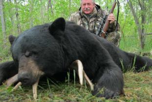 Agassiz Outfitter, black bear hunting 1