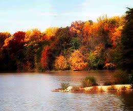 Lake Accotink