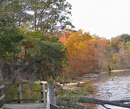 Mason Neck State Park