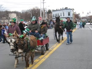 Equines at the Mid-Hudson Saint Patrick's Parade