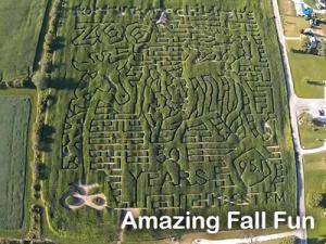 Amazing Fall Fun