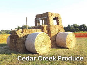 Cedar Creek Produce
