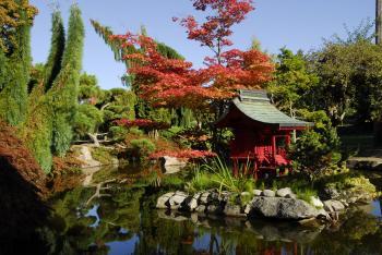 Point Defiance Park Japanese Gardens