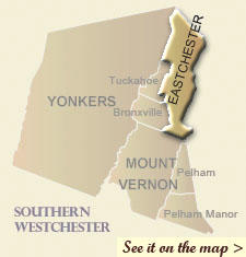 southern_eastchester.jpg