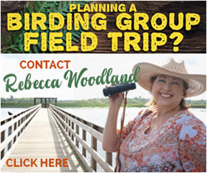 Contact Rebecca Woodland to plan your birding group field trip
