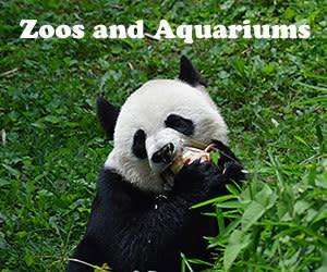 Zoos and Aquariums