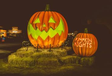 Pumpkin Nights