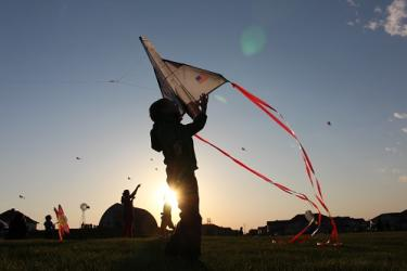 Johnston Kites on the Green
