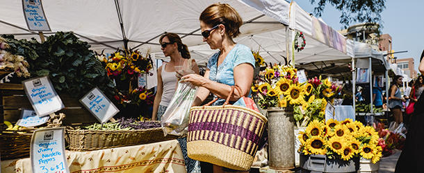 Sunflowers at Boulder Farmers' Market
