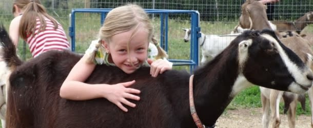 Girl hugging a Goat at Mountain Flower Goat Dairy