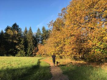 Cougar Trails at WSU Vancouver