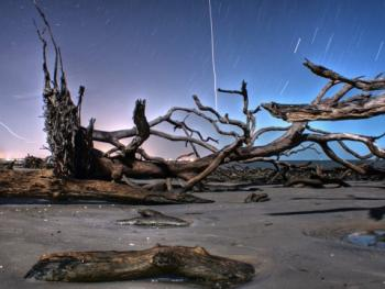Photo by Bert Cash - Driftwood Beach in the Evening