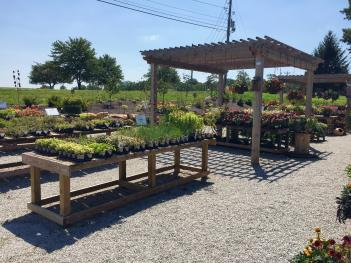 Bear's Garden Center has a lot to offer gardeners with a green thumb. Bear's Lawn Care takes care of those with a black thumb.