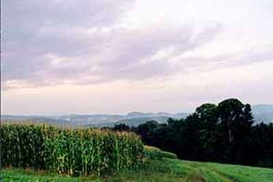 Cornish Maine Valley