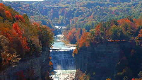 Canyon of Fall Foliage