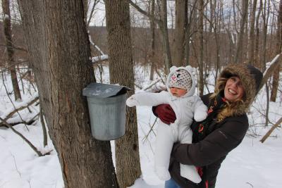 cumming-nature-center-naples-maple-event