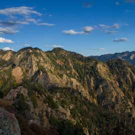 Looking east from the summit toward Wildcat Ridge, photo by John Badila