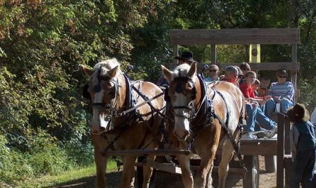 Buckley Homestead Things to Do Lowell Hayride