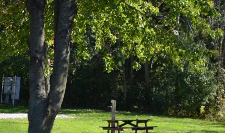RV Park Site