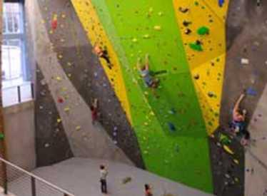 People on yellow green wall