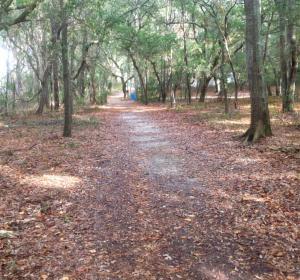 walking trail in Snows Cut Park in Carolina Beach