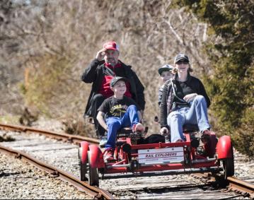 Rail Family